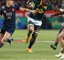 Malherbe, Mohoje issued citing commissioner warnings | News Article