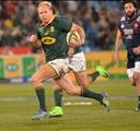 Ross Cronjé ruled out of third Springbok Test   News Article