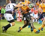 """Bookies fancy Cheetahs chances to win the """"Pro14"""" 