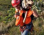 'Dassie' kry sy dag | News Article
