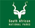Leeus maak amok in 'n  Suid-Afrikaanse wildtuin | News Article