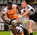 Pokomela extends stay at Cheetahs | News Article