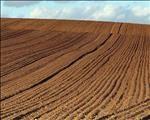 Landbou-ekonoom sê ekonomiese omvang van geld wek kommer in staatsprogramme | News Article