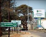Monitor die invoer van beeste uit Botswana fyn, meen ekonoom   News Article