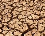NK-boere ontvang droogtehulp   News Article
