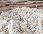 OVK-wolmarkverslag: SA mark verhandel sterker op 15de nasionale veiling   News Article