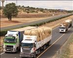 Boere Droogtehulp SA gaan onverpoos voort met hulpverlening aan boere    News Article